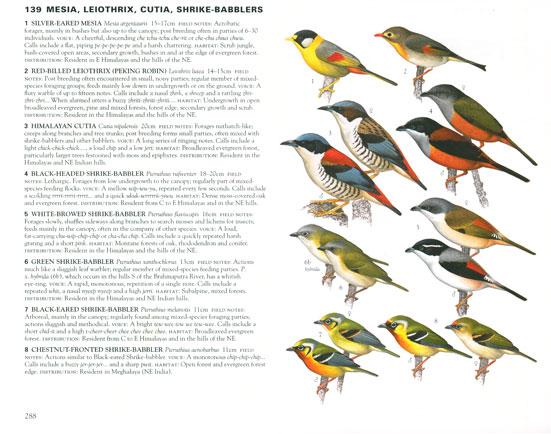 Birds of india (collins field guide): harpercollins australia.