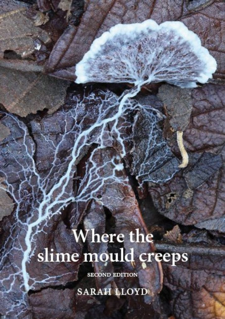 Where the Slime Mould Creeps: The Fascinating World of Myxomycetes (Second Edition)