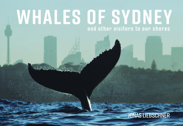 Whales of Sydney:  and other Visitors to our Shores