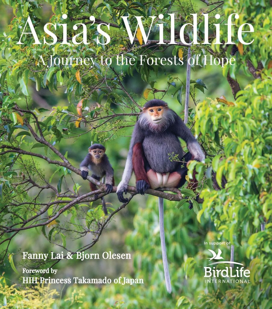 Asia's Wildlife:  A Journey to the Forests of Hope
