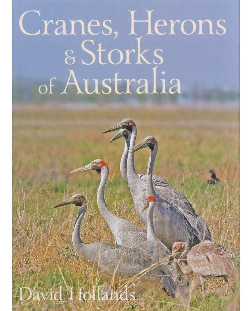 Cranes, Herons & Storks of Australia
