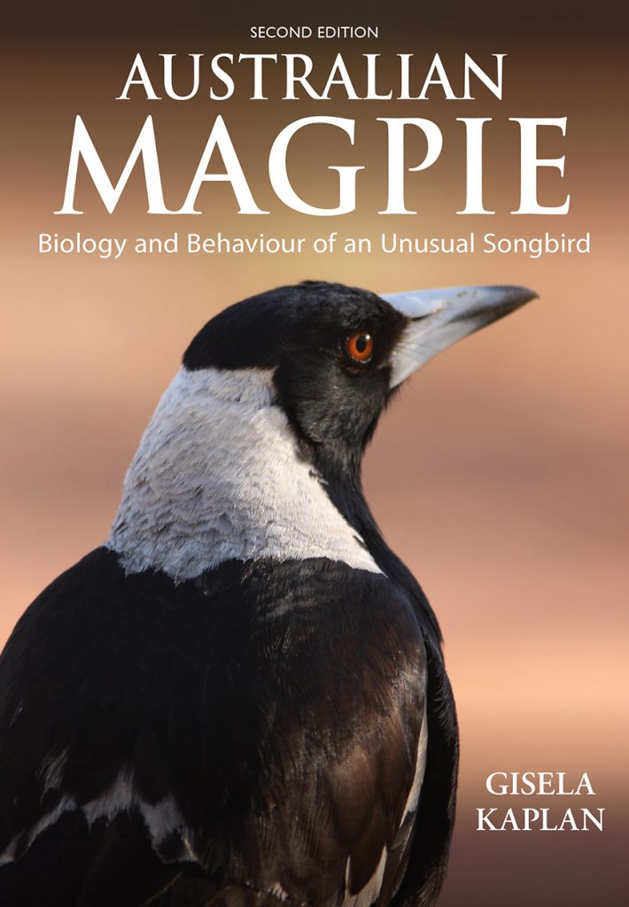 Australian Magpie:  Biology and Behaviour of an Unusual Songbird (Second Edition)