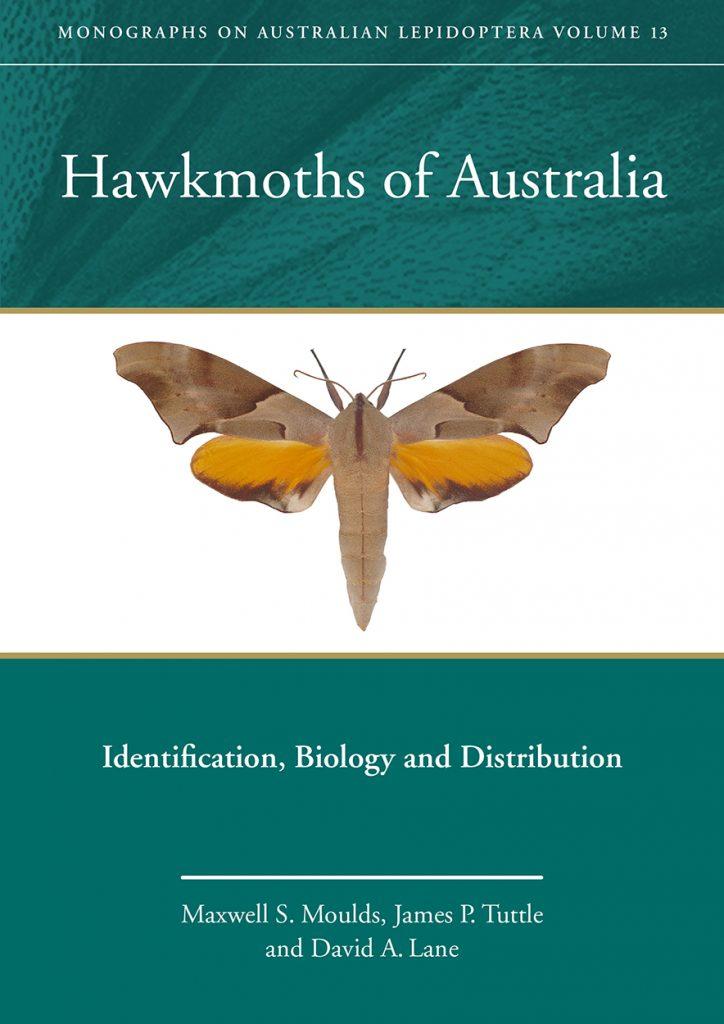 Hawkmoths of Australia: Identification, Biology and Distribution