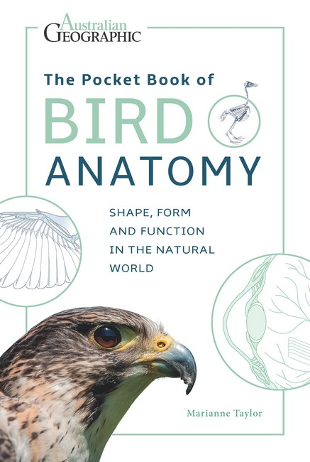 The Pocket Book of Bird Anatomy:  Shape, Form and Function in the Natural World